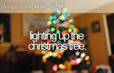 lighting up the christmas tree.