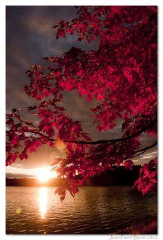 Autumn, Sunset