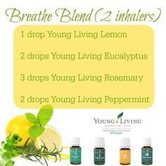 Are Natural Asthma Remedies: Young Living Essential Oils: Breathe Blend Essential Oils For Breathing, Essential Oil Diffuser Blends, Doterra Essential Oils, Young Living Essential Oils, Yl Oils, Essential Oil Inhaler, Essential Oil Nasal Congestion, Sinus Congestion, Living Oils