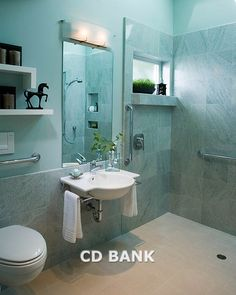 handicapped bathroom ideas | Contemporary Bathroom with Handicapped Access - Royalty Free Stock ...