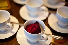 a cup of ... rose
