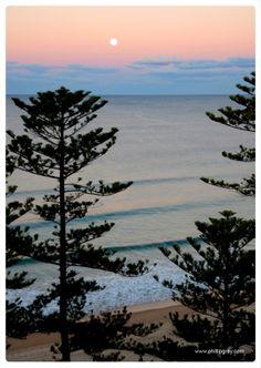 Sydney - Manly Moonrise