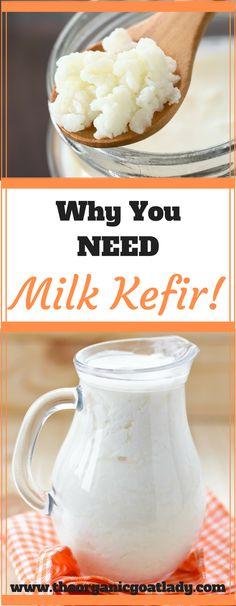 Why You Need Milk Kefir!