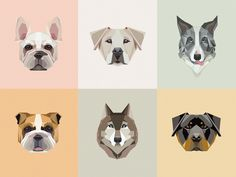 6 low polygon, geometric dogs vector illustrations available on Creative Market!