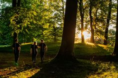 sunrise, trees, forest, sport, sporty,