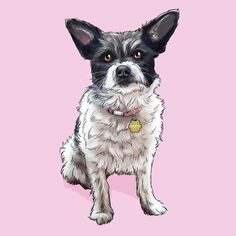 Draw Dogs custom dog portrait painting, a birthday gift for kids who are dog lovers, personalized dog owner gift, great home decor. Custom Dog Portraits, Pet Portraits, Cat And Dog Drawing, Woman Drawing, Animal Drawings, Cool Drawings, Custom Dog Beds, Pet Memorial Gifts, Gifts For Dog Owners
