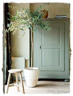 25 Home Decoration Organization and Storage Tips Contemporary interior design – More Interior Trends To Not Miss. The Best of home indoor in Home Decor Accessories, Indoor Plants, Indoor Trees, Painted Furniture, Green Furniture, Painted Armoire, Painted Walls, Kitchen Furniture, Bedroom Furniture