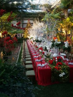 Is there anyplace prettier at Christmas than Longwood? I love this, especially the moss runner. I'm pretty sure this was 2012.