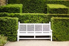 Bench tucked into hedges...love.
