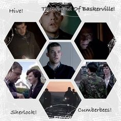 The Hounds Of Baskerville collage