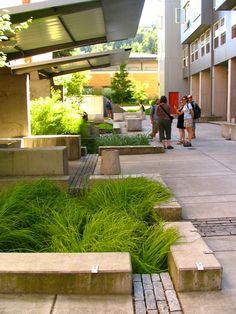 42 Brilliant Rain Garden Design Ideas #design #garden #ideas #inspiration #raingarden