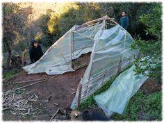 Recubriendo con el plástico Outdoor Gear, Tent, Green Houses, Permaculture, Vivarium, Store, Tents