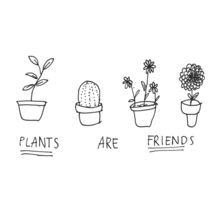 plants are friends draw - Pesquisa Google