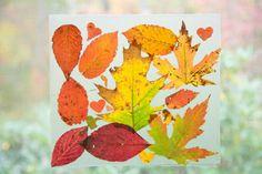 Simple Autumn Leaf Suncatchers