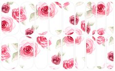 Dusty Rose   NAS