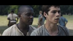 NEW MAZE RUNNER TRAILER. HOLY AWSOMENESS