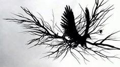MTV HD Crow on Vimeo