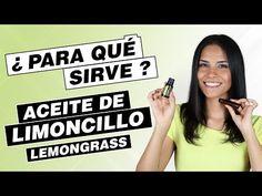 Limoncillo doTerra - Aceite esencial de Lemongrass - para que sirve - YouTube Lemon Grass, Youtube, Lima, Lemon Essential Oils, Health Products, Beauty Hacks, Healthy Breakfasts, Limes, Lemon Balm