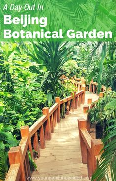 One of the many wonderful attractions Beijing has to offer is the Beijing Botanical Garden. A perfect day out for the whole family.