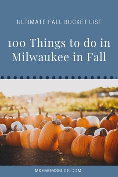 Ultimate Fall Bucket List 2018 :: 100 Things to Do in Milwaukee this AutumnIt's time for FALL – the season of pumpkin spice lattes, cute boots, giant leaf piles and so much more! There are so many things to do in Milwaukee this fall, and we can hardly WAI Pumpkin Run, Pumpkin Farm, Pumpkin Spice, Autumn Activities, Activities To Do, Bucket List 100, State Fair Grounds, 100 Things To Do, We Are Festival