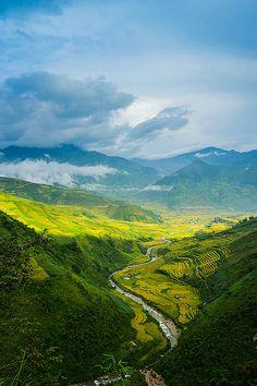 VIETNAM - YenBai province - MuCangChai, paradise of terraceai