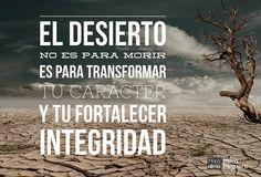 El desierto es un camino no un destino. No es para que mueras es para sacar lo mejor de ti. Puedes leer la reflexión completa en (LA BIO) http://www.manaparaelalma.com/el-desierto-no-es-para-morir #manáparaelalma #fe #esperanza #proceso #procesos #FuegodeDios #TierraPrometida #esperanza #ConfianzaenDios #Dios