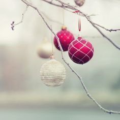 Ornaments hung in the trees outside, plastic ones would be best! Add in some birdseed ornaments for a more natural look.