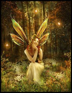 Forest Fairy.jpg