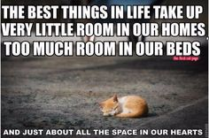 All the space in our hearts......