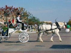 Carriage Rides - Shops at Legacy - Christmas - Plano Homes & Land Real Estate #plano #TX