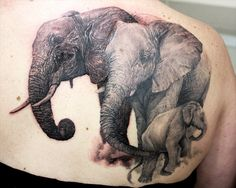 Realistic Elephant Family Tattoo On Right Back Shoulder Baby Elephant Drawing, Elephant Family Tattoo, Elephant Tattoos, Animal Tattoos, Arrow Tattoos, Love Tattoos, Beautiful Tattoos, Tatoos, Family Tattoo Designs