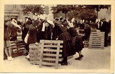 PONT-L'ABBE, Finistère, Bretagne (France) - Marché aux cochons  dans les années 1950 (pigs market in Brittany) - via Flickr (lannig 94)