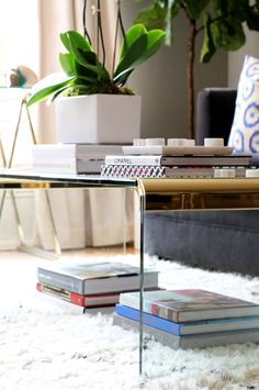 Coffee table styled with books and plant