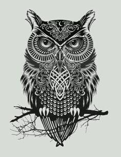 Finally found an owl I like