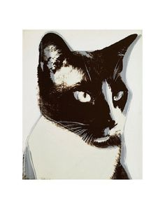 Cat, c.1976 Print by Andy Warhol at Art.com