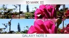 Interesting! Video Test: Samsung Galaxy Note 3 Versus the Canon 5D Mark III