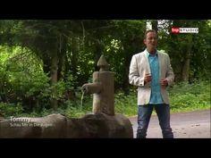 Tommy Steib - Schau Mir In Die Augen - YouTube