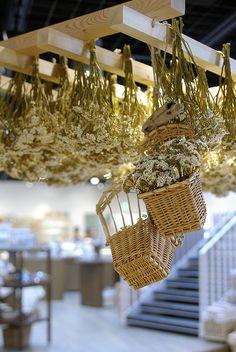 Dried flower by kaz Dried Flower Arrangements, Dried Flowers, Evergreen Flowers, Deco Floral, Floral Design, Flower Ceiling, Flower Boxes, Garden Planters, Hanging Baskets
