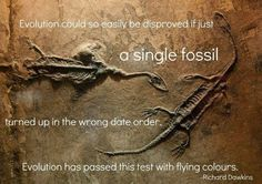 """""""Evolution could so easily be disproved if just a single fossil turned up in the wrong date order. Evolution has passed this test with flying colours"""" - Richard Dawkins    A+, evolution."""