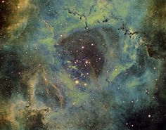 https://flic.kr/p/Rmn25Y | NGC 2239 and the Rosette nebula in narrowband | Further to my in depth H Alpha image of the Rosette nebula on 18 January, tonight I was able to add OIII and SII data, using my own variant of the Hubble palette to create this colour image.  Peter  Hydrogen Alpha = 15x10minutes Oxygen III = 20x10minutes Sulphur II = 12x10minutes  Total image time = 470minutes (7hours 50minutes)  Equipment: Atik 460EX, HA filter, 0.75 reducer, 130mm triplet APO, EQ8 mount, autoguided…