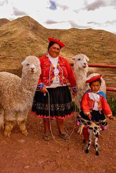 Llama Ladies por Chris Taylor
