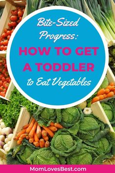 Struggling to get your child to eat their veggies? Help is on the way. Our sneaky recipes will hoodwink even the pickiest eaters into consuming more vegetables. Healthy Lunches For Kids, Healthy Toddler Meals, Toddler Snacks, Healthy Cooking, Toddler Activities, Catering Food Displays, Fruit Displays, Picky Eaters Kids, Baby Weaning