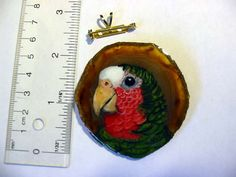 This brooch/pendant is a cuban amazon parrot that I have hand painted on a slice of agate and then sealed with clear epoxy. The combination