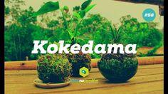 Como fazer e cuidar do kokedama #98 - YouTube