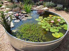 kokokoKIDS: Backyard And Garden Ideas For Kids.