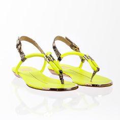 Ayden Acid Yellow sandal