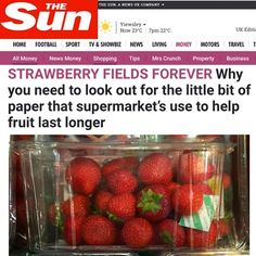 Why you need to look out for the little bit of paper that supermarket's use to help fruit last longer - It's Fresh!🍃 filters @thesun online today. Read the article link in Bio. #ItsFresh #ItsFreshFilter #ethylene #fruit #fruits #shelflife #freshness #growers #exporters #retail #supermarket #supplychain #packers #farmtofork #farmtotable #freshproducesupplier #FreshProduce #strawberries #strawberry #berries #avocado #avocados #thesun #uk #producenews #fresh #morrisons #marksandspencers…