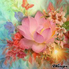 Sunset Lotus
