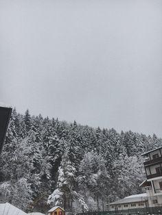 #winterwonderland #beautifulnature