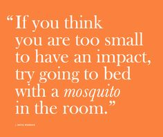 Awesome quote from CISV Sweden's mosquito tactics book. (More info about CISV at cisv.org)